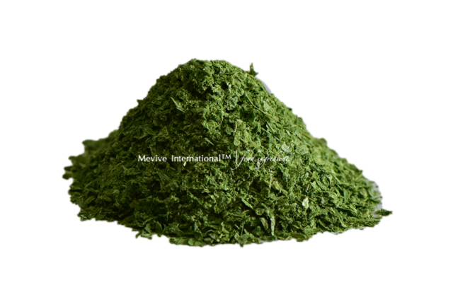 Dehydrated and Dried Chives Powder – Suppliers and Dealers in India